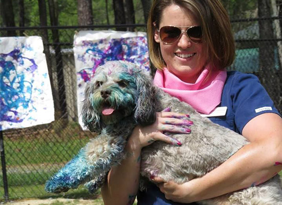 Dog Painting at Dogwood Doggy Daycare