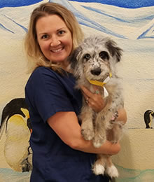 Kristen Martin Dogwood Veterinary Hospital & Pet Resort